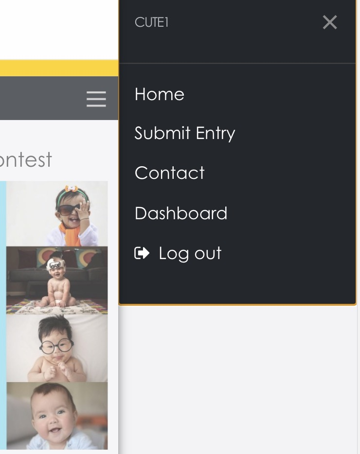 dashboard link